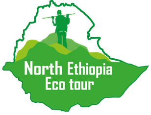 North Ethiopia Eco Tour | Hike Ethiopia | Simien Mountains 3 Day Trek | Simein Mountains 2 day Trek | Local Tour Operator Simein Mountains Ethiopia | Simen Mountains Trekking | Siemien Mountain Ethiopia Trekking Simien Mountains | Simien Trekking Tour | 6 Day Trek in Simien Mountains | 7 Day Trek in simien Mountains | 10 Days Trek in Simien Mountains |